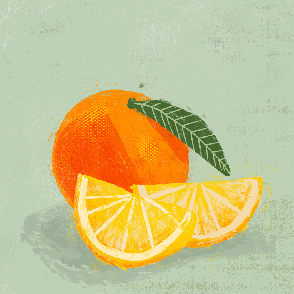 sarah chand food illustration orange (digitale illustration)