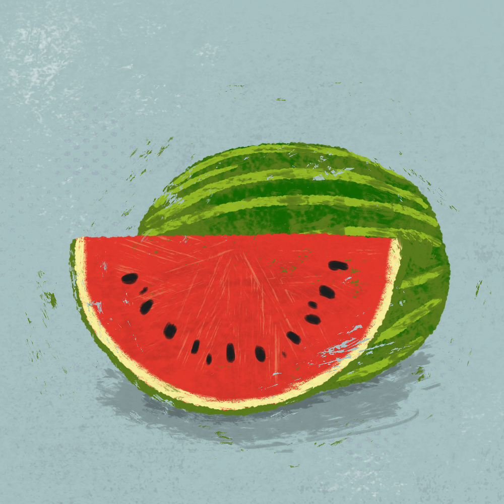 sarah chand food illustration melone (digitale illustration)
