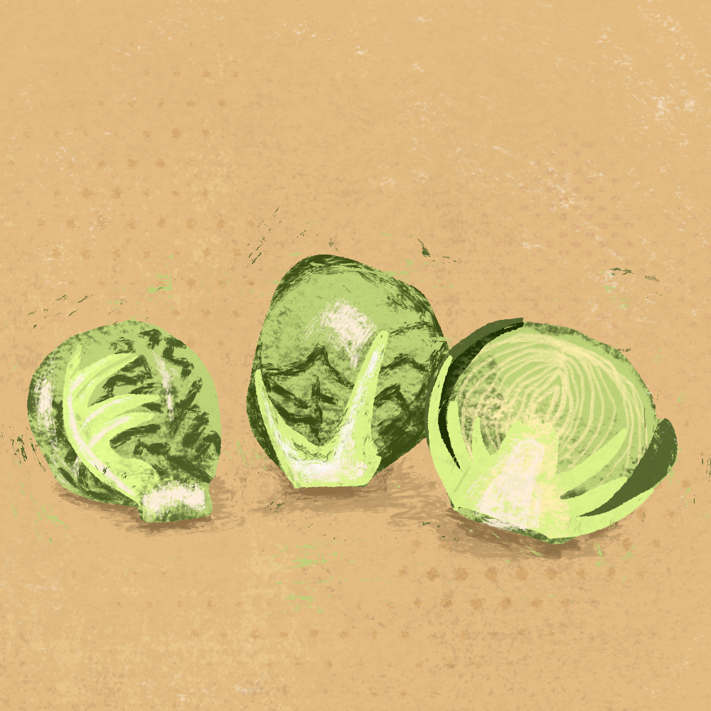 sarah chand food illustration rosenkohl (digitale illustration)